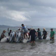 Coastal Skippers License Training January 2018 @ Sodwana Bay (2)